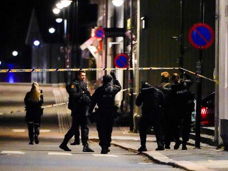 Norvegijoje lanku ginkluotas vyras nušovė penkis žmones, du sužeidė