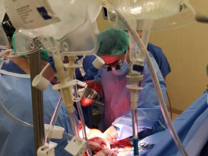 Medikai atskleidė transplantacijos užkulisius