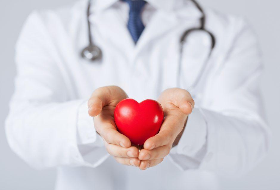 Palanga poilsiautojus stebins Žolinės širdimi iš tonos ledo ir vaistažolių