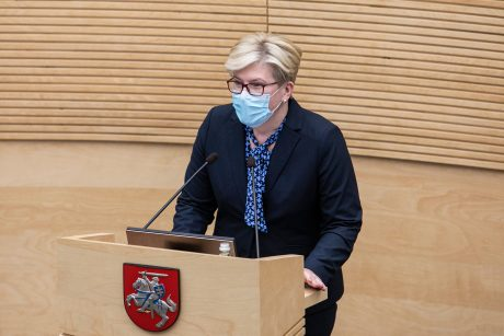 Seime balsų užteko: Lietuvos premjerė – I. Šimonytė