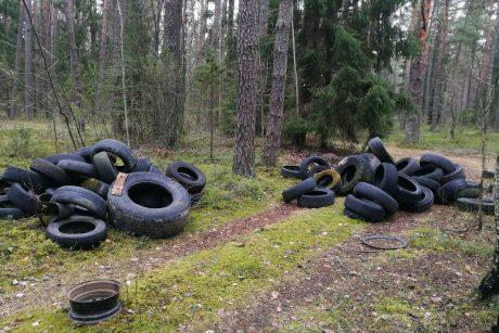 Vaizdas tikrai prastas: vairuotojai kalnus senų padangų išmeta miškuose