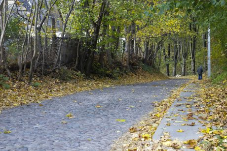 Kelininkai: rytiniuose šalies rajonuose yra drėgnų kelio ruožų