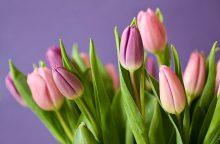 Dienos horoskopas 12 Zodiako ženklų <span style=color:red;>(balandžio 9 d.)</span>