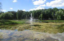 Pernai išvalytas Kalniečių parko tvenkinys atrodo baisiai <span style=color:red;>(pamatykite)</span>